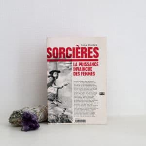 Livre sorcieres mona chollet womoon
